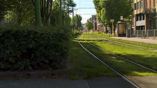 Groene tramlijn Grotesteenweg