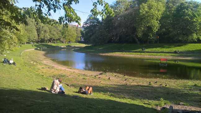 Water in vijver stadspark